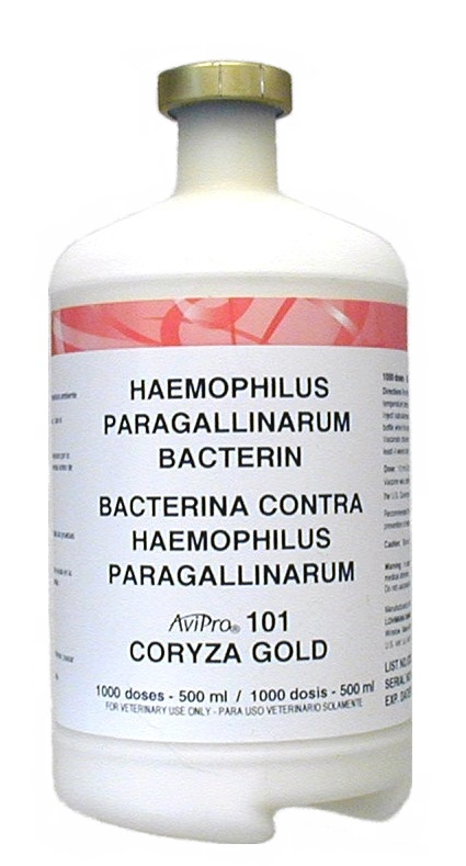 F-1-9 CORYZA GOLD Vaccine 1000 Dose! NEW BATCH ! !