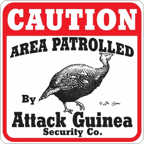 ATTACK GUINEA SIGN !